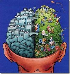 cerveau gauche cerveau droit et l'approche quantique
